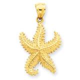 Open-Backed Starfish Pendant 14k Gold Polished C2537