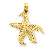 Open-Backed Starfish Pendant 14k Gold Polished C2538