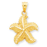 Open-Backed Starfish Pendant 14k Gold Polished C2540