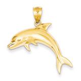 Dolphin Pendant 14k Gold C28