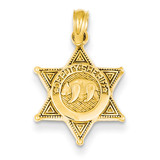 Deputy Sheriff Badge with Bear Pendant 14k Gold C3098