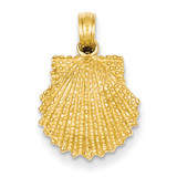 Textured Scallop Shell Pendant 14k Gold C3376