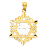 Rhodium Star of David Pendant 14k Gold C3989