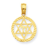 Star of David and Chi in Circle Pendant 14k Gold C4459