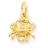 Cancer Zodiac Charm 14k Gold C479