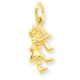 Leo Zodiac Charm 14k Gold C480