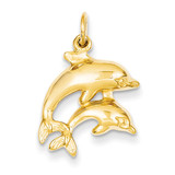 Dolphin Charm 14k Gold C493