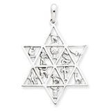 12 Tribes Star of David Pendant 14k White Gold D1690
