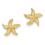 Starfish Earrings 14k Gold E908