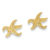 Starfish Earrings 14k Gold E909