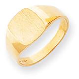 Signet Ring 14k Gold RS300