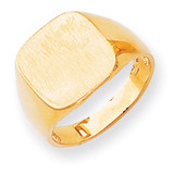 Men's Signet Ring 14k Gold RS315