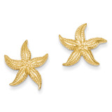 Starfish Post Earrings 14k Gold TC587