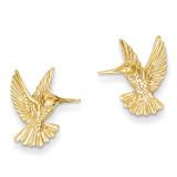 Hummingbird Post Earrings 14k Gold TC625