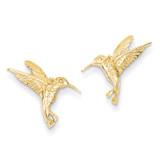 Hummingbird Post Earrings 14k Gold TC743