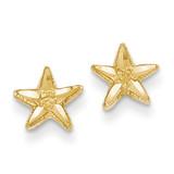 Starfish Earrings 14k Gold Diamond-cut TC749
