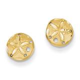 Sand Dollar Earrings 14k Gold Diamond-cut TC767