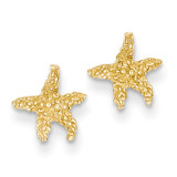 Starfish Post Earrings 14k Gold Polished & Textured TM765