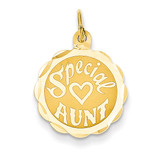 Special Aunt Charm 14k Gold XAC627