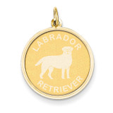 Labrador Retriever Disc Charm 14k Gold XAC870