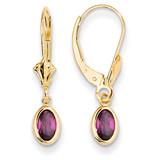 6x4 Oval Bezel June/Rhodolite Leverback Earrings 14k Gold XBE102