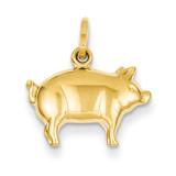 Pig Charm 14k Gold XCH170