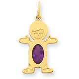 Boy 6x4 Oval Genuine Amethyst-February 14k Gold XCK13