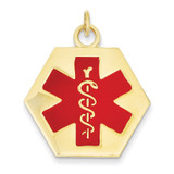 Medical Jewelry Pendant 14k Gold XM30