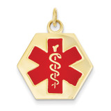 Medical Jewelry Pendant 14k Gold XM31