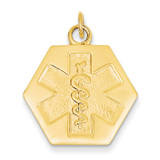 Medical Jewelry Unenameled Pendant 14k Gold XM31N