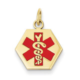Medical Jewelry Pendant 14k Gold XM36