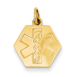 Non-enameled Medical Jewelry Pendant 14k Gold XM36N