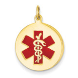 Medical Jewelry Pendant 14k Gold XM408