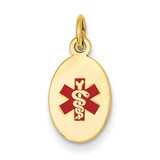 Medical Jewelry Pendant 14k Gold XM413