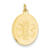Non-enameled Medical Jewelry Pendant 14k Gold XM414N