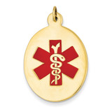 Medical Jewelry Pendant 14k Gold XM415
