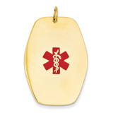 Medical Jewelry Pendant 14k Gold XM417