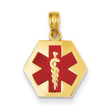Enameled Medical Disk Pendant 14k Gold XM522