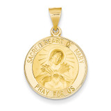 Sacred Heart of Mary Medal Pendant 14k Gold Polished and Satin XR1262