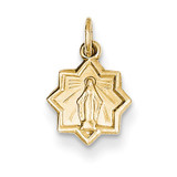 Blessed Mary Charm 14k Gold XR337