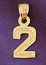 Number 2 Charm Bracelet or Pendant Necklace in Yellow, White or Rose Gold DZ-95112 by Dazzlers