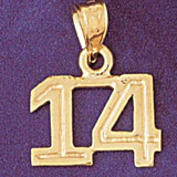 Number 14 Charm Bracelet or Pendant Necklace in Yellow, White or Rose Gold DZ-951114 by Dazzlers