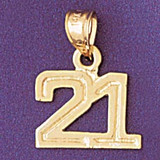 Number 21 Charm Bracelet or Pendant Necklace in Yellow, White or Rose Gold DZ-951121 by Dazzlers