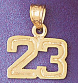 Number 23 Charm Bracelet or Pendant Necklace in Yellow, White or Rose Gold DZ-951123 by Dazzlers
