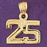 Number 25 Charm Bracelet or Pendant Necklace in Yellow, White or Rose Gold DZ-951125 by Dazzlers