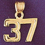 Number 37 Charm Bracelet or Pendant Necklace in Yellow, White or Rose Gold DZ-951137 by Dazzlers
