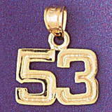 Number 53 Charm Bracelet or Pendant Necklace in Yellow, White or Rose Gold DZ-951153 by Dazzlers