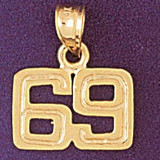 Number 69 Charm Bracelet or Pendant Necklace in Yellow, White or Rose Gold DZ-951169 by Dazzlers