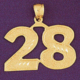 Number 28 Charm Bracelet or Pendant Necklace in Yellow, White or Rose Gold DZ-950928 by Dazzlers
