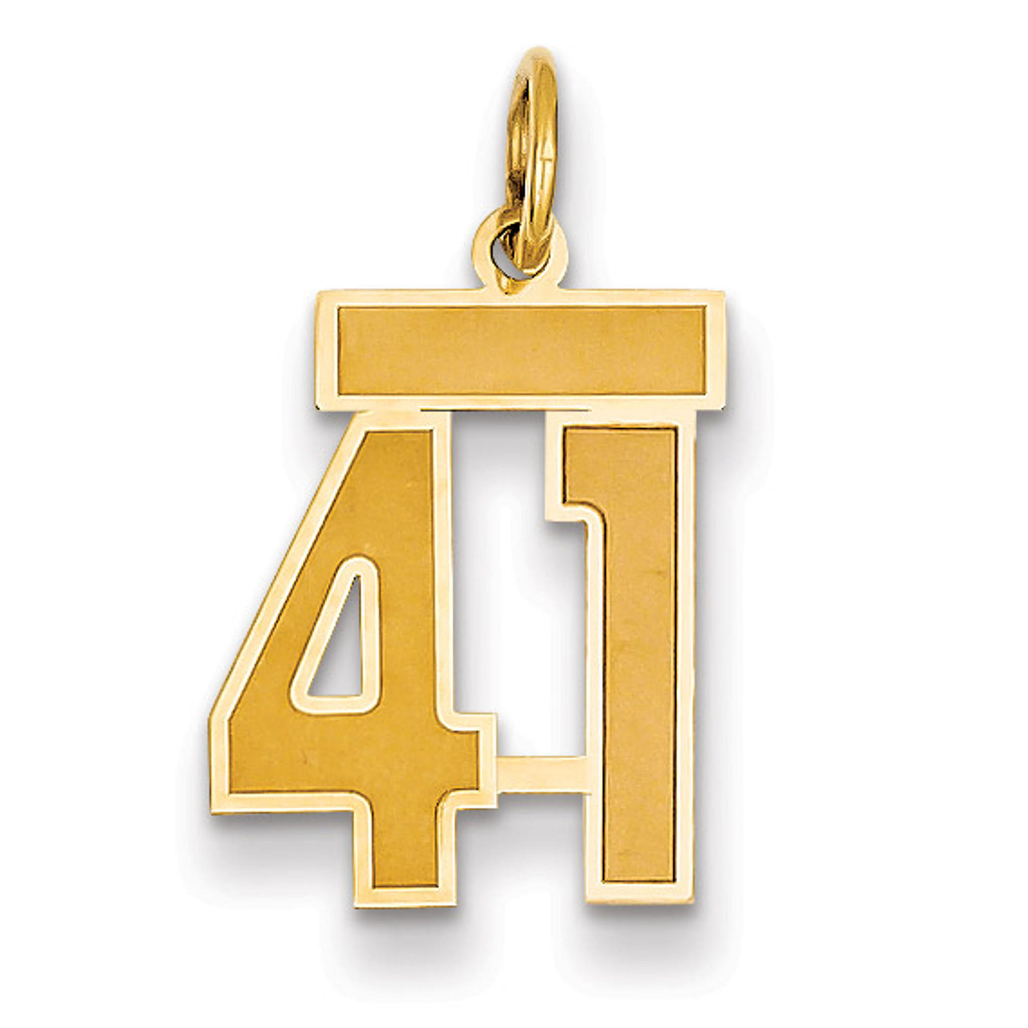 14K White Gold Hawaii Pendant 22 mm Jewels Obsession Hawaii Charm Pendant